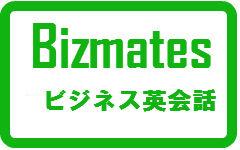 bizmatesicon