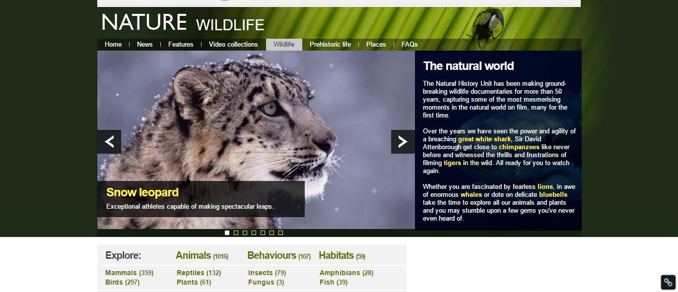 bbc_wildlife