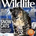 海外雑誌BBC Wildlife(英語版)の定期購読と購入先【まとめ】